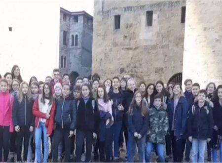 Attività ERASMUS